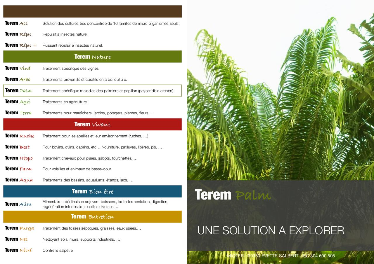 Flyer Terem Palm V4.pdf - page 1/2