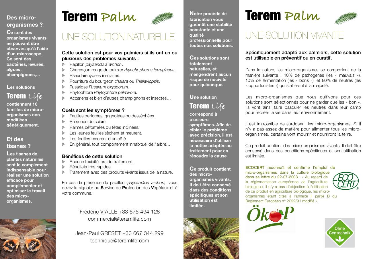 Flyer Terem Palm V4.pdf - page 2/2