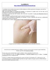 la cellulite 1