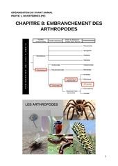 ova c8 arthropodes pdf c