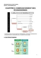 ova c9 echinodermes pdf c