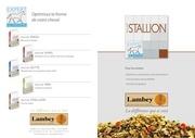 fiche stallion fr web 1