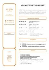 Fichier PDF cv jp1