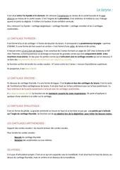 Fichier PDF le larynx