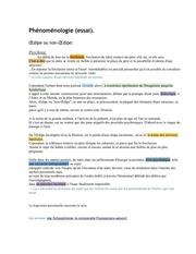 Fichier PDF psychose ou schizophrenie phenomenologie