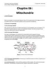 Fichier PDF chapitre 06 mitochondrie