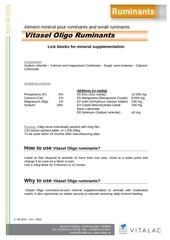 ft vitasel oligo ruminants 10kg en