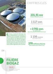 baro2012 etat enr europe biogaz electricite