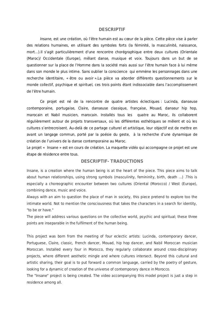Aperçu du document (738864668) DESCRIPTIF INSANE.pdf - page 1/2