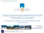 presentation projet grand domaine ski