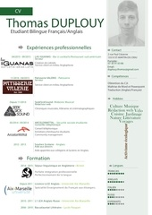 Fichier PDF cvkamas