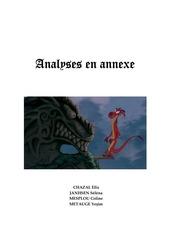 Fichier PDF analysesdef