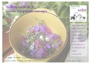 Fichier PDF flyer aster recto