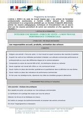 Fichier PDF integrer une mission force de vente a mon travail