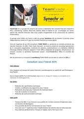 Fichier PDF recrutement team trade luxembourg consultant java talend