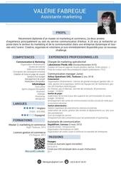 Fichier PDF cv valerie fabregue