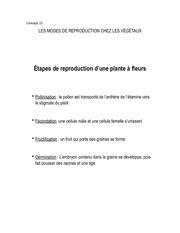 Fichier PDF concept 22
