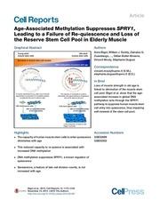 Fichier PDF age methylation