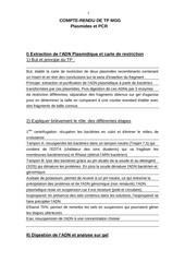Fichier PDF compte rendu plasmides et pcr