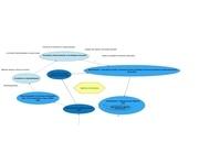 Fichier PDF cv diplomes et formations