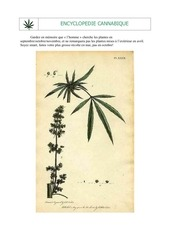 Encyclopedie cannabique.pdf - page 5/105