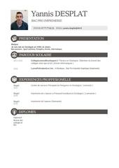 Fichier PDF yannis desplat cv