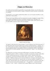 Fichier PDF origine du particolore copie