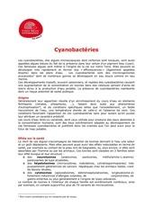 cyanobacteries