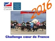 challenge ccdf 2016