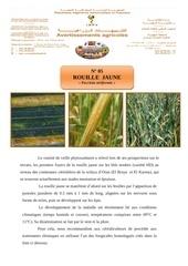 Fichier PDF rouille jaune