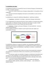 le metabolisme microbien