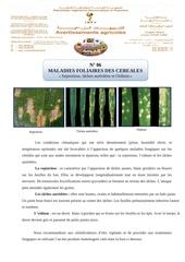 Fichier PDF maladies foliaires