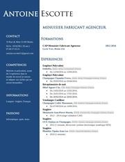 Fichier PDF cv toine