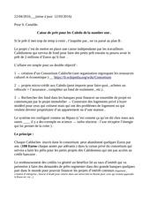 Fichier PDF plan b