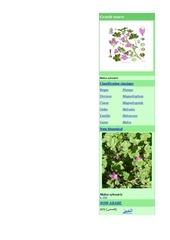 herbier1 1