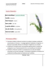 mon herbier
