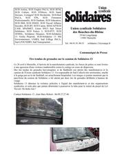 Fichier PDF cmmunique de presse solidaires 13