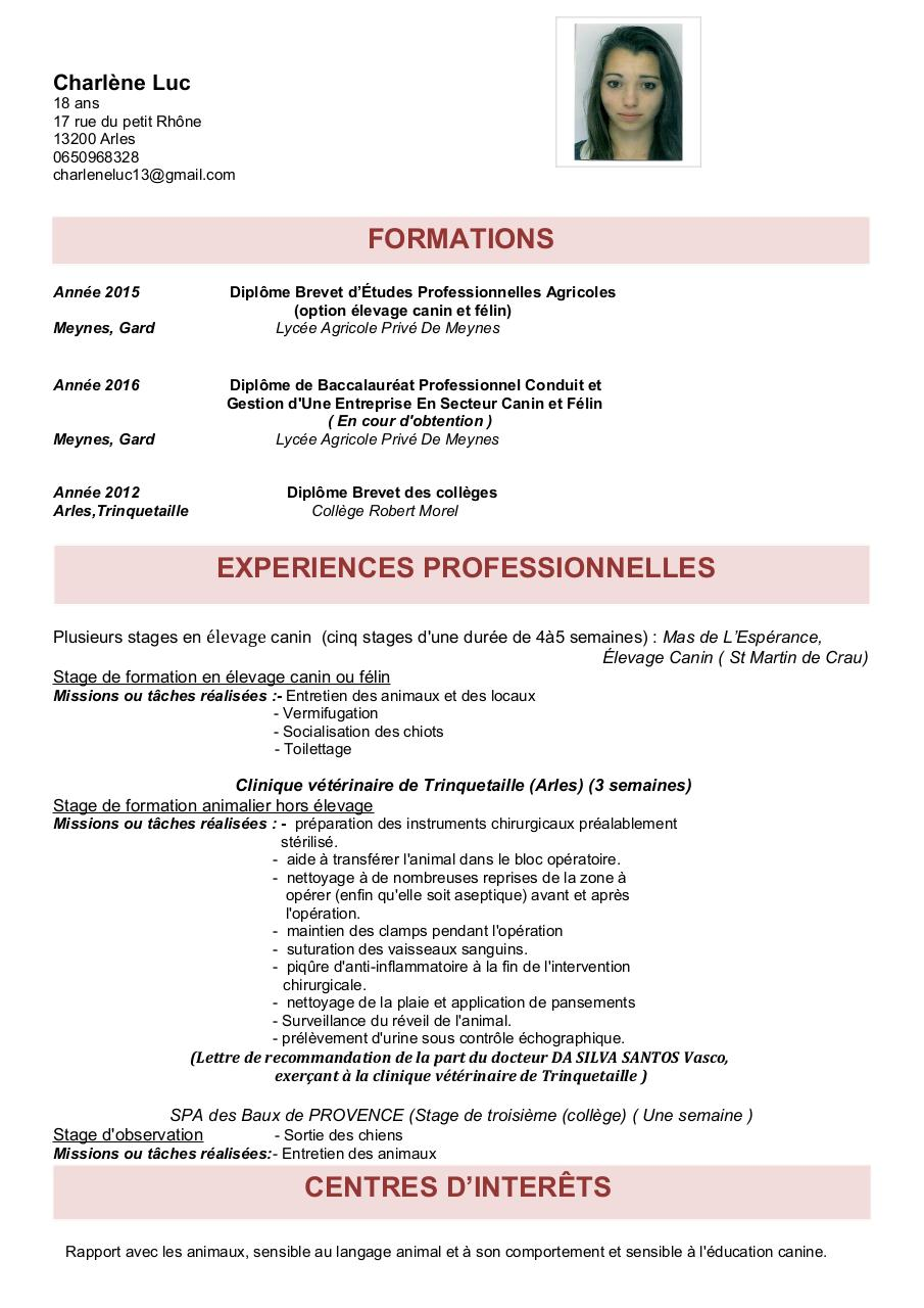 Aperçu du document cv-1.2 ok.pdf - page 1/1