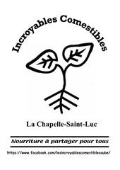 Fichier PDF affichage ic la chapelle st luc