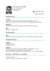 Fichier PDF cv jb 1