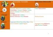Fichier PDF association des plantes