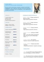 Fichier PDF cv asv l