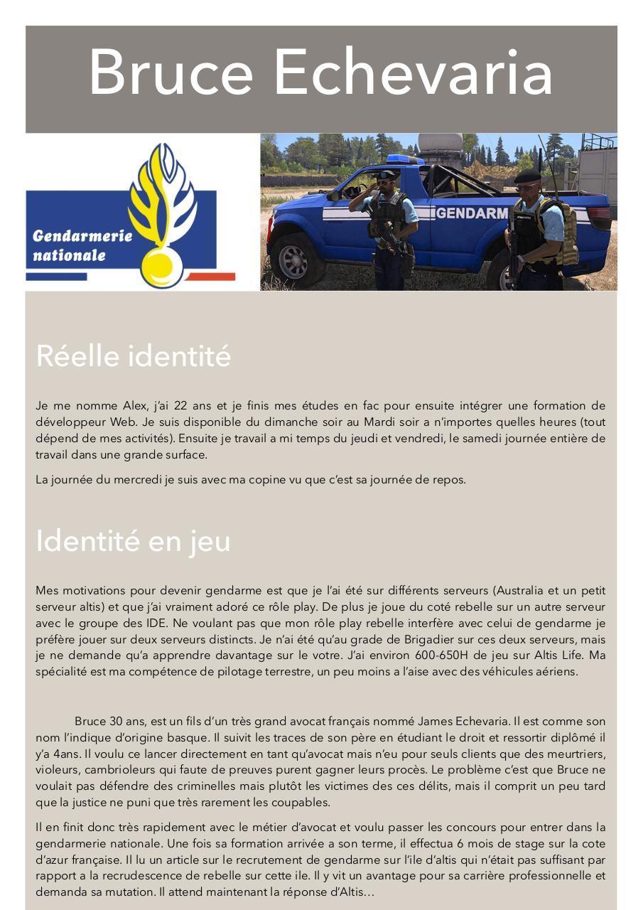 fichier pdf  cv gendarme altis destiny  cv gendarme altis