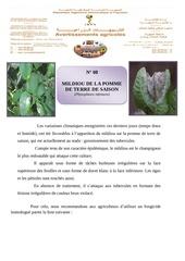 Fichier PDF 8 mildiou de la pdt