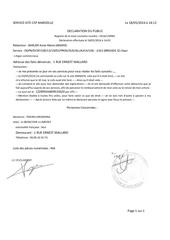 Fichier PDF decla 1