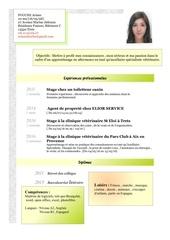 cv fouche ariane19 05