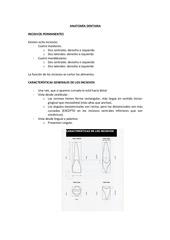 pdf preventiva