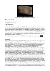 scp 233 fr version pdfpdf