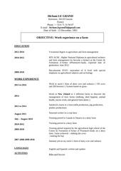 Fichier PDF cv hicham