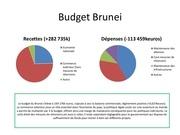 budget brunei